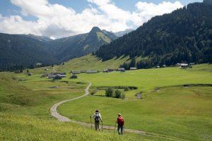 Hiking Schönenbach