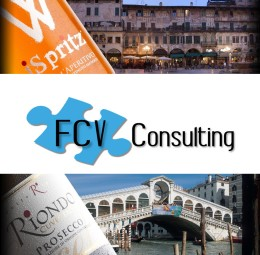 FCV Consulting