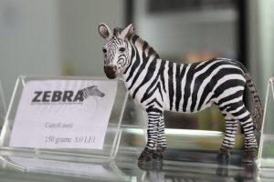 Detalii Interior Zebra9809