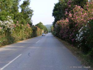 05-Grecia 2010 189